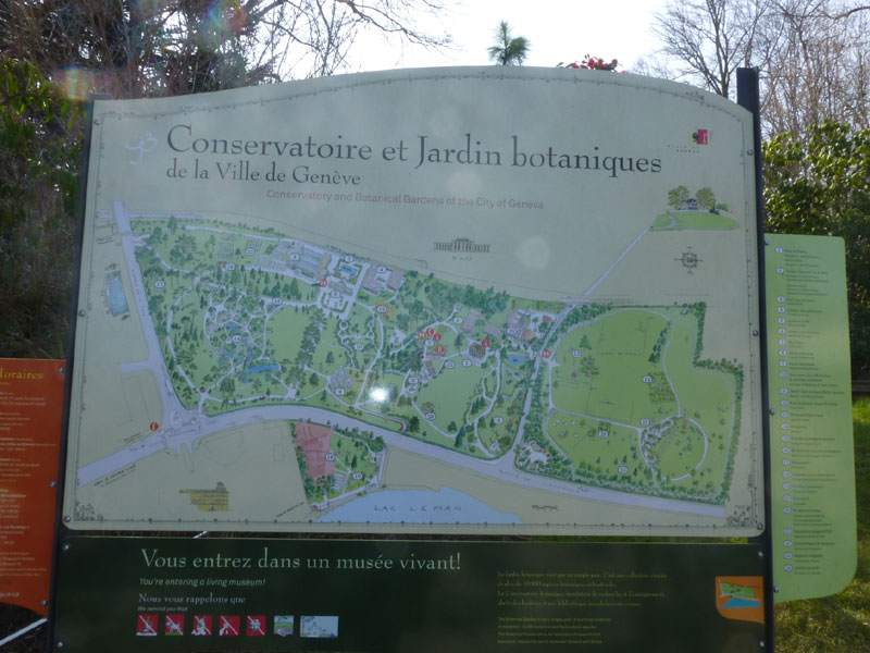 vues du jardin botanique de genve une grande serre des massifs floraux des - Jardin Botanique Geneve